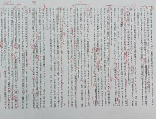 東京大学/2011年/国語/第一問/解答解説