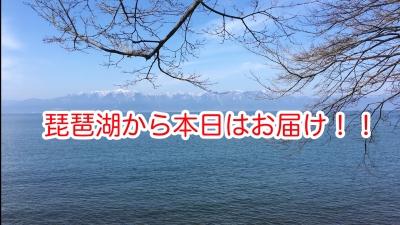 GV_touroku.00_39_36_20.Still007