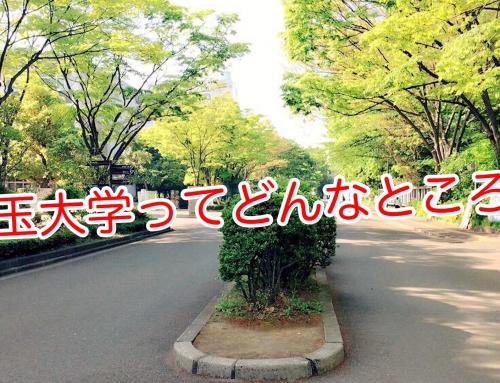 埼玉大学 教育学部レポートvol.2