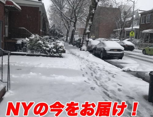 NYってどんな場所(GVAO特別企画)